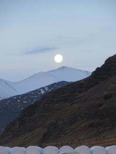 Sunrise / Moonset in Hali
