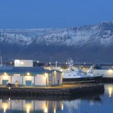 Reykjavík harbour (looking north)
