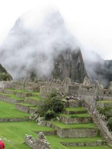 Machu Picchu - among the ruins