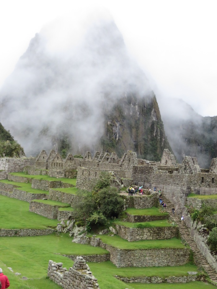 Machu Picchu - among the ruins