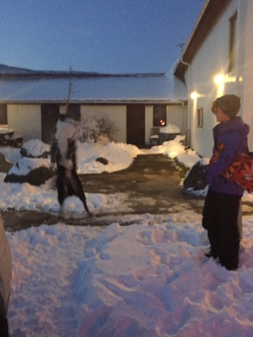 Jumping for snowballs