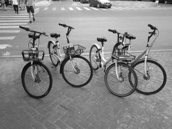Nanjing Bicycles